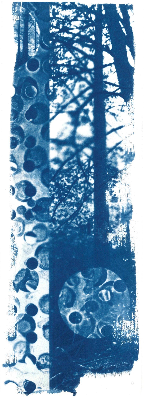 scan14.jpg