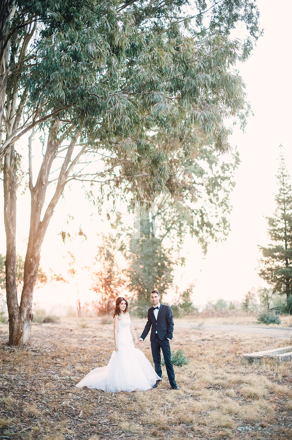 RYAN PARKER PHOTOGRAPHY_WEDDINGS_PRETORIA_ROSEMARY HILL_M&N -0513.jpg