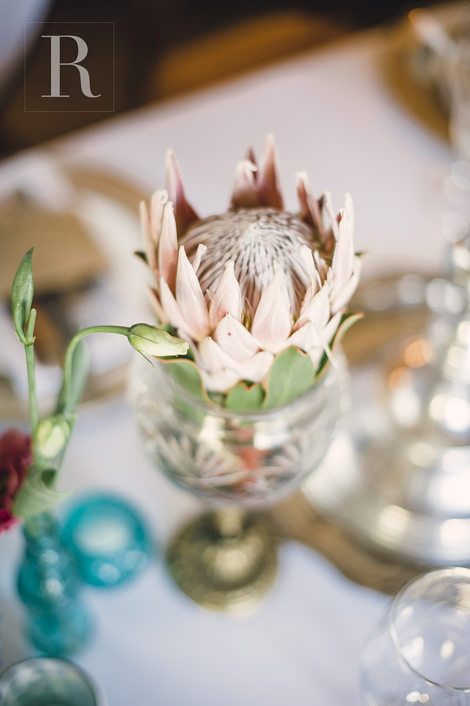 RYAN PARKER PHOTOGRAPHY_WEDDINGS_JOHANNESBURG_MORRELLS_M&M DSC_2416.jpg