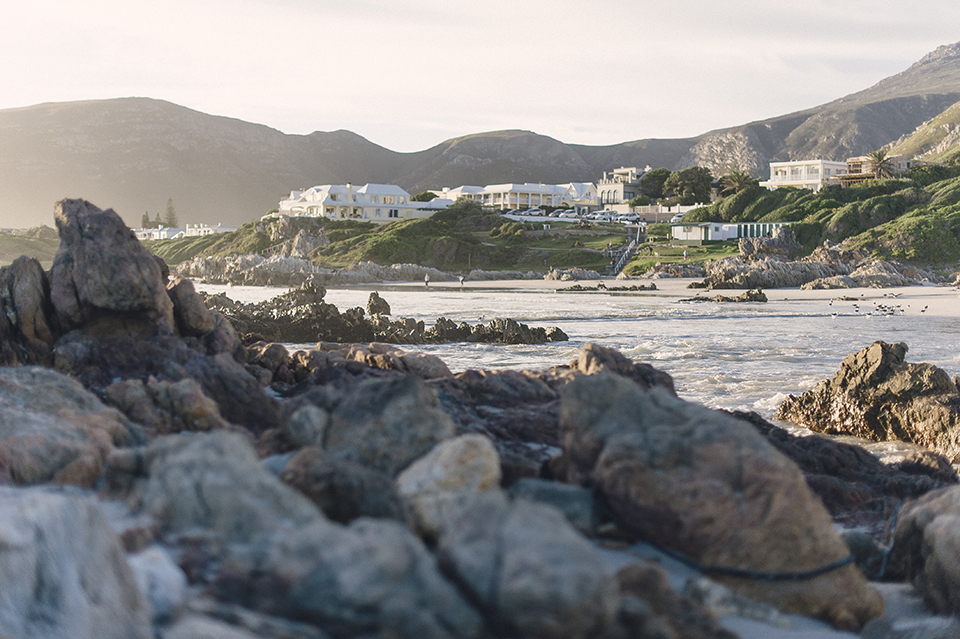 RyanParker_WeddingPhotographer_FineArt_CapeTown_EngagementSession_Hermanus_M&S_DSC_2512.jpg