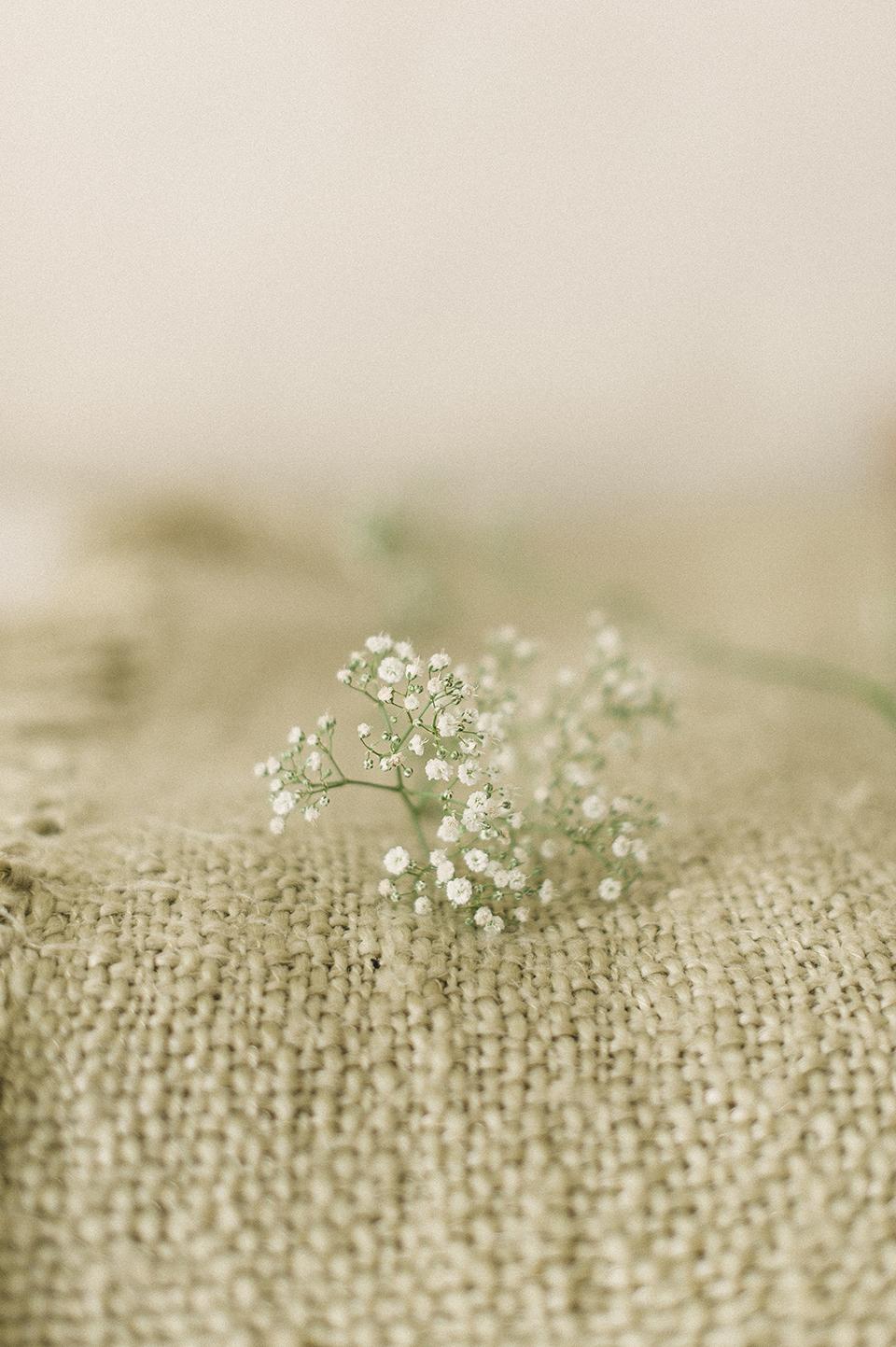RyanParker_WeddingPhotographer_FineArt_CapeTown_Stanford_Hermanus_J&I_DSC_0121.jpg