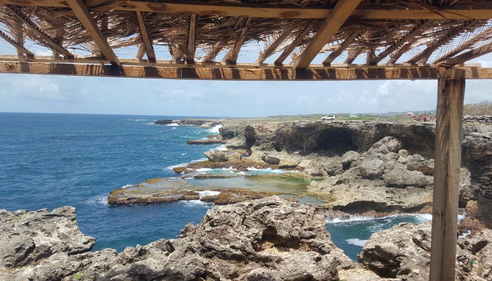 2016-Barbados-6-13-animal-flower-cave1.png