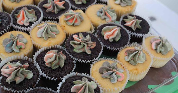 jammin-catamaran-barbados-cupcakes-1.jpg