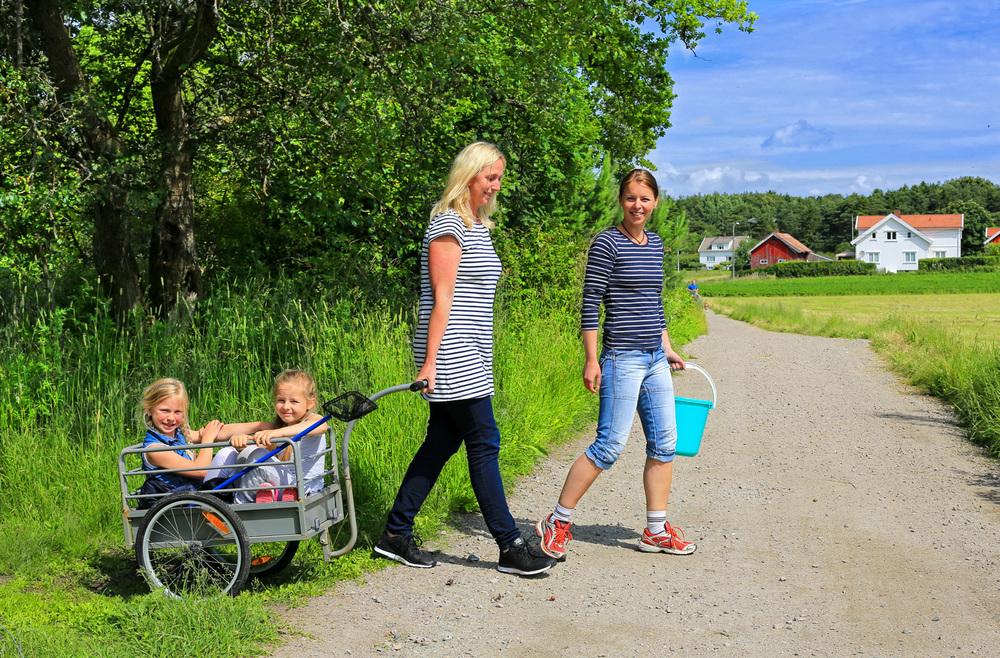 Øyloffing på Søndre Sandøy. ©