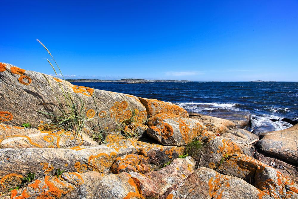 Rødskjær er en holme som det er bygget en molo ut til fra Lauer. Flott utfarsted for båter og badegjester som liker solvarme svaberg.