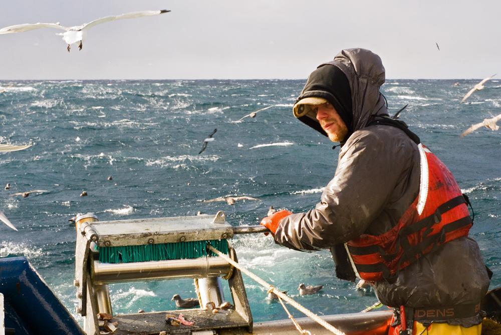 Torskefiske.jpg