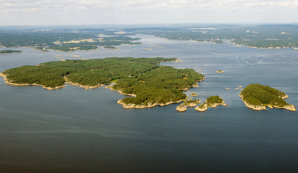 Singløya
