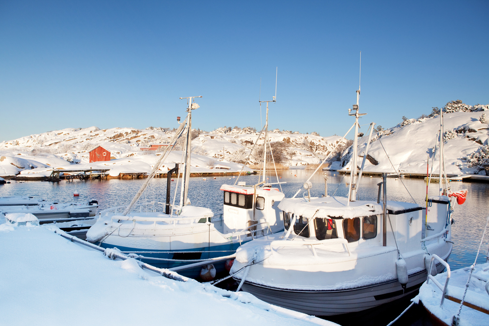 Vinter-i-Papperhavn.jpg