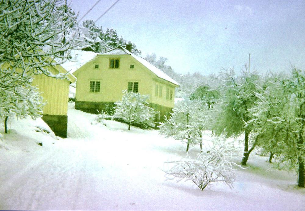 Det gamle småbruket Aune Sand vokste opp i på Nordenga på Vesterøy.