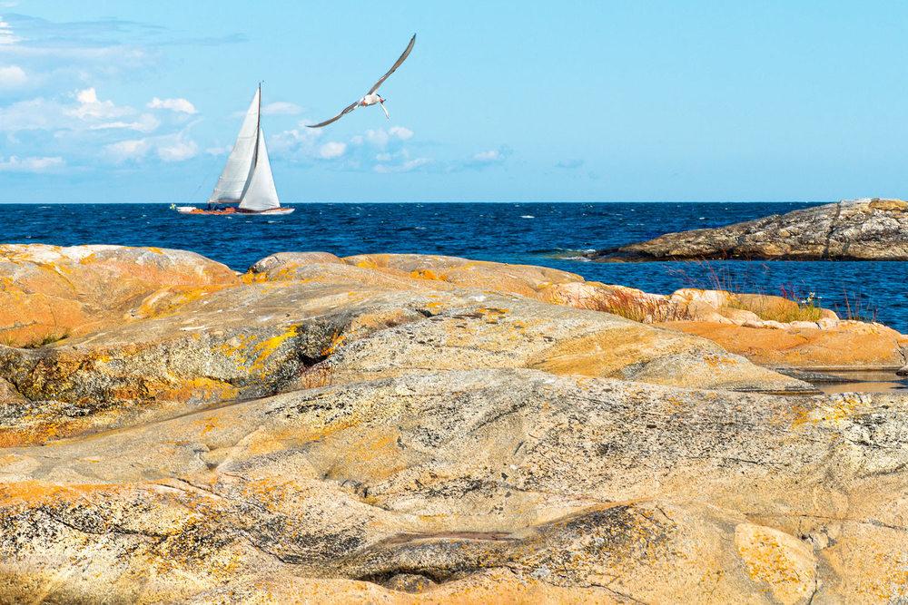 Mellom Hvaler i Østfold og Grebbestad i Bohuslän ligger noe av det vakreste havområdet i hele Skandinavia; En fantastisk skjærgård, nærmest uberørt natur på øyer og holmer, og et hav som skjuler både unike korallrev og fiskeslag.  Området er blitt et eldorado for en stadig større turisme – både til vanns og til land. I 2009 ble det etablert en norsk–svensk «union» i området: Ytre Hvaler og Kosterhavet nasjonalparker med totalt 800 kvadratkilometer vernet natur på hav og land.