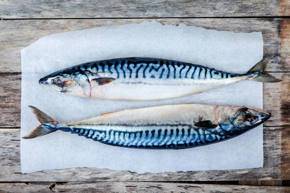 Deilig fet makrell klar til å tilberedes.
