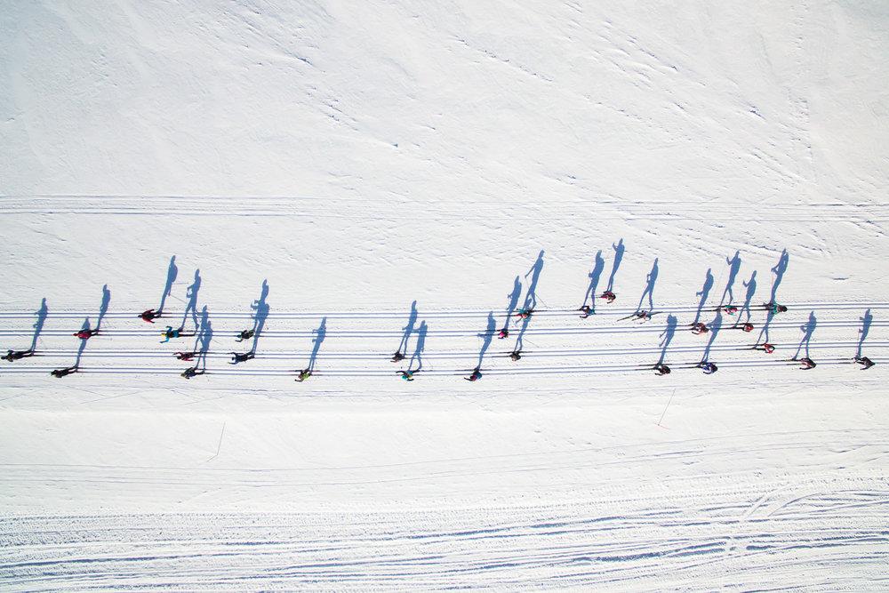 Musical skiers