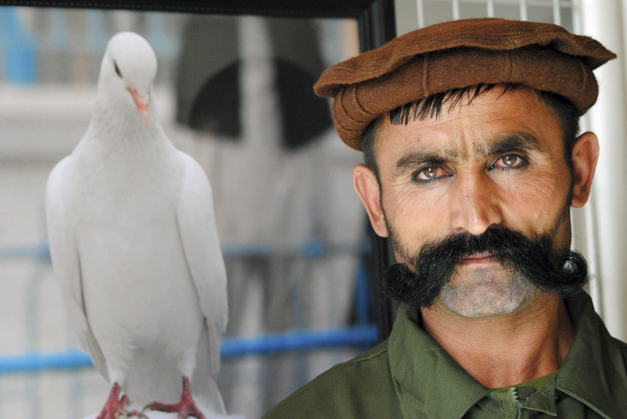 Nasim Seyamak - 1991, AfghanistanNasim Seyamak studied primary and secondary schools in Ghazni province. After the collapse of the Taliban regime, he moved to Kabul and graduated from Habibia High School in 2009. Nasim Seyamak is now studying to become a film director at the Faculty of Fine Arts at Kabul University. He is also an active member of 3rd Eye Film and Photojournalism Centre.