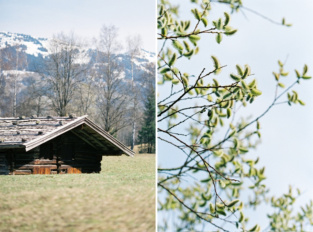 kitzbuehel-birgithart-nature