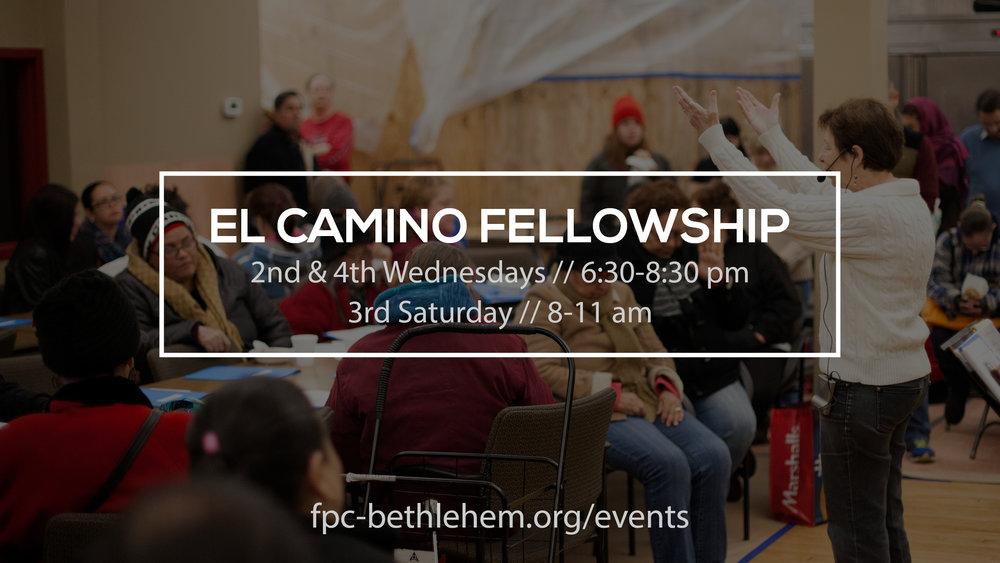 El Camino Fellowship_2017_Detailed.jpg