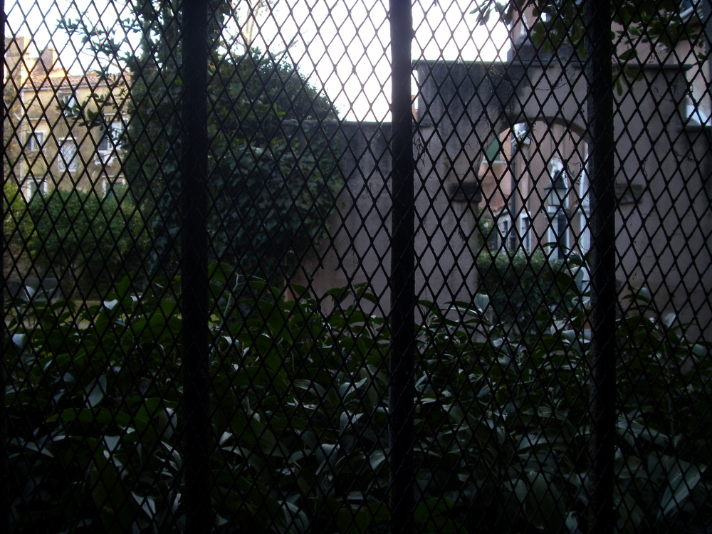 An old garden seen from inside the Oratorio di San Ludovico, Venice 2010