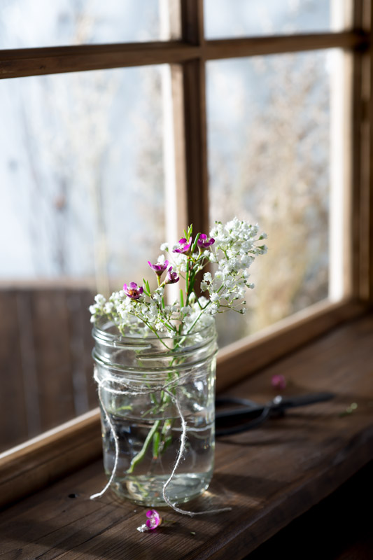 Fresh Spring Flowers on a Windowsill Stock Photo