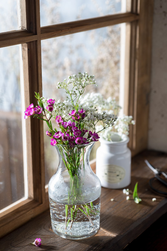Spring Flowers on a Windowsill Stock Photo