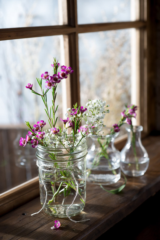 Purple Flowers on a Windowsill
