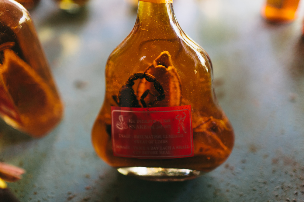 Snake whisky, an aphrodisiac sold to western tourists. Mekong Delta, Vietnam.