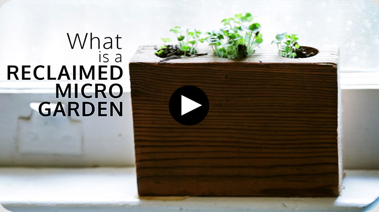 what-is-a-reclaimed-micro-garden.jpg