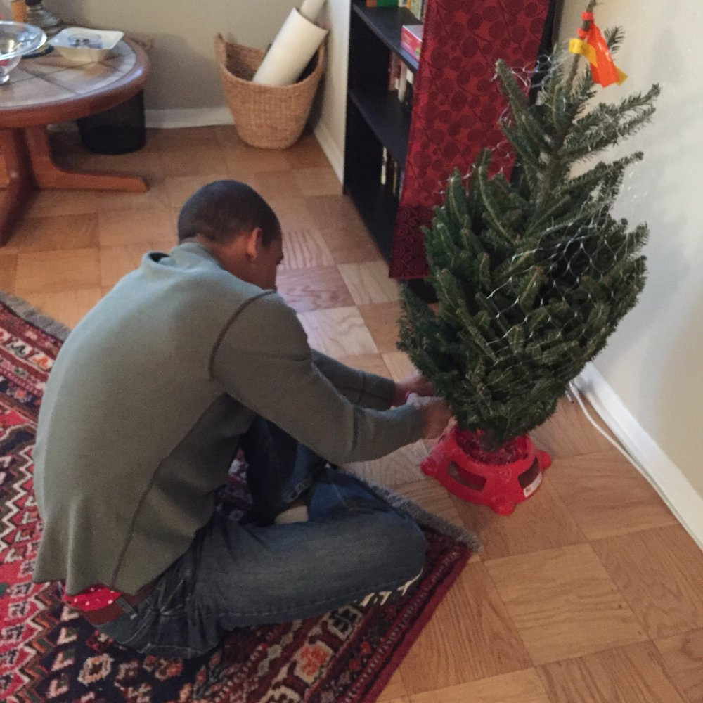 Setting up our tree