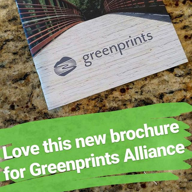 Awesome new brochure for @gpalliance thanks to our friends and great partners at @plae_us. Thanks!