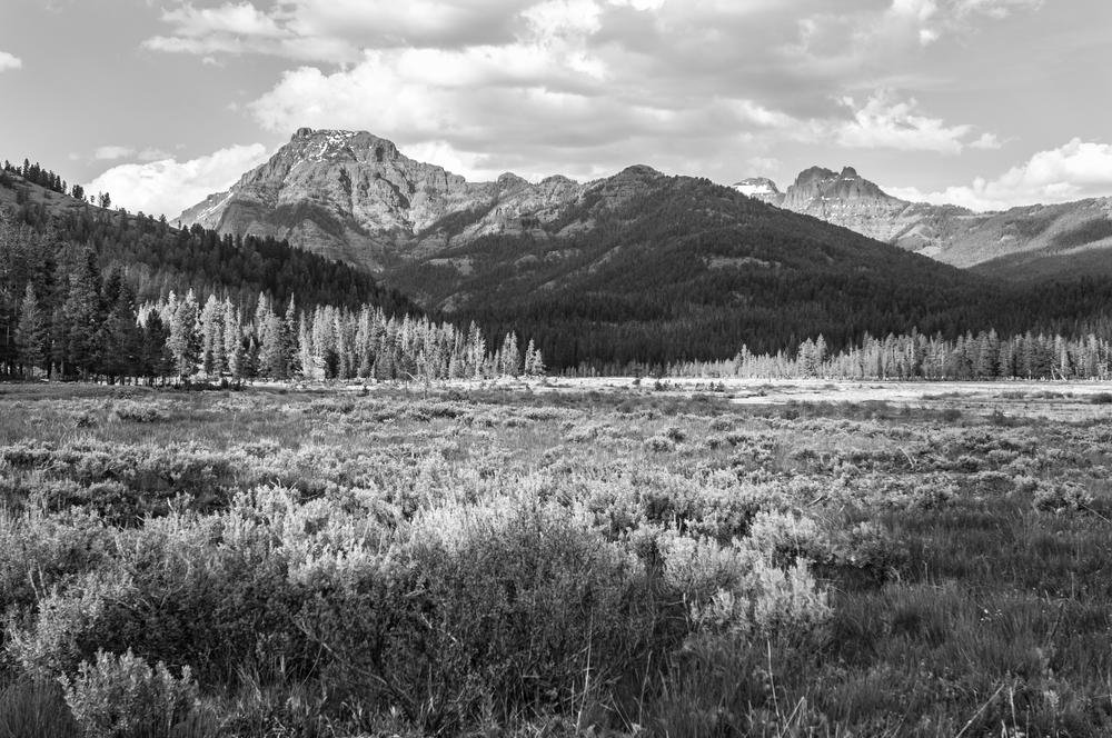 Yellowstone5.jpg
