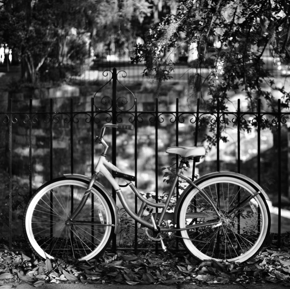 SavannahBike2.bw.crop.jpg