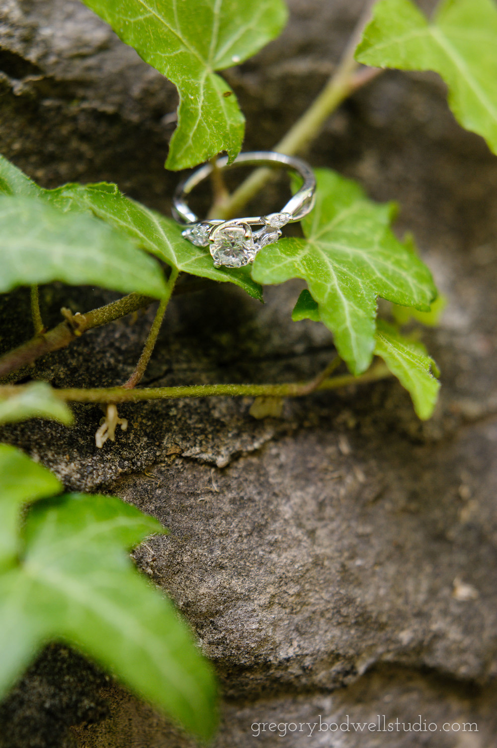 Suter_Engagement_014.jpg