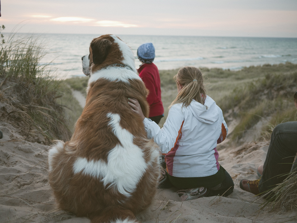 During sunset watch, we met Moby, 2 yr old gentle giant.