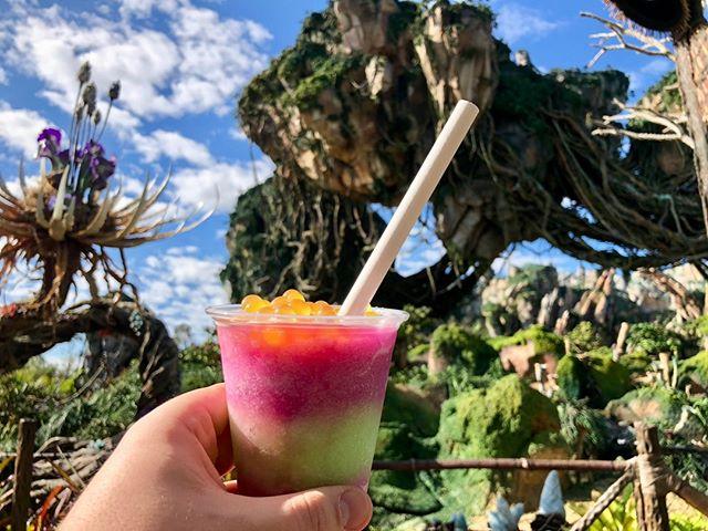 What is your favorite treat in Pandora? . . . . #disney #disneyworld #waltdisneyworld #disneyparks #disneyfan #disneygram #disneyig #disneypics #instadisney #florida #orlando #wdw #picoftheday #disneyphoto #wdwresort #mickeymouse #photooftheday #travel #vacation #themeparks #disgsram #magic