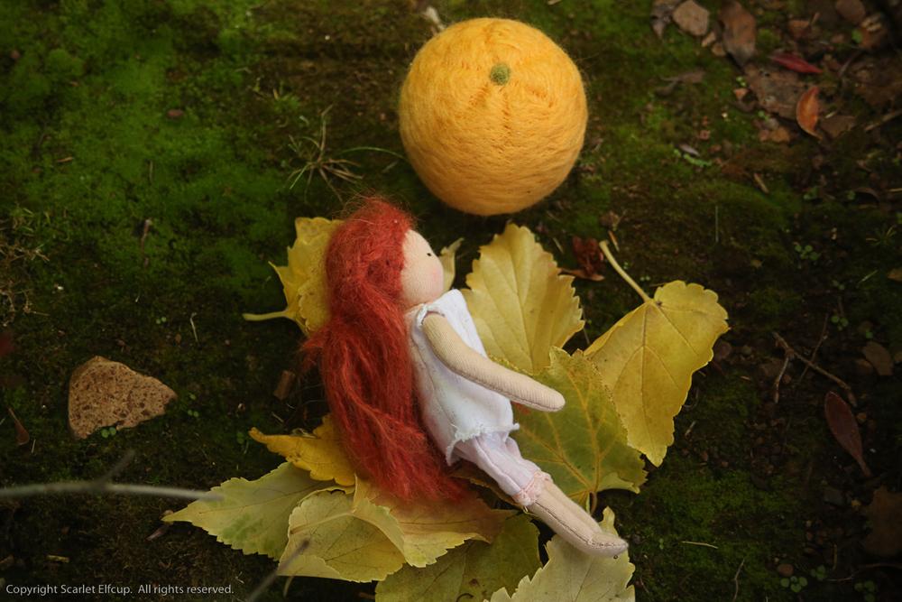 Clementine-22.jpg
