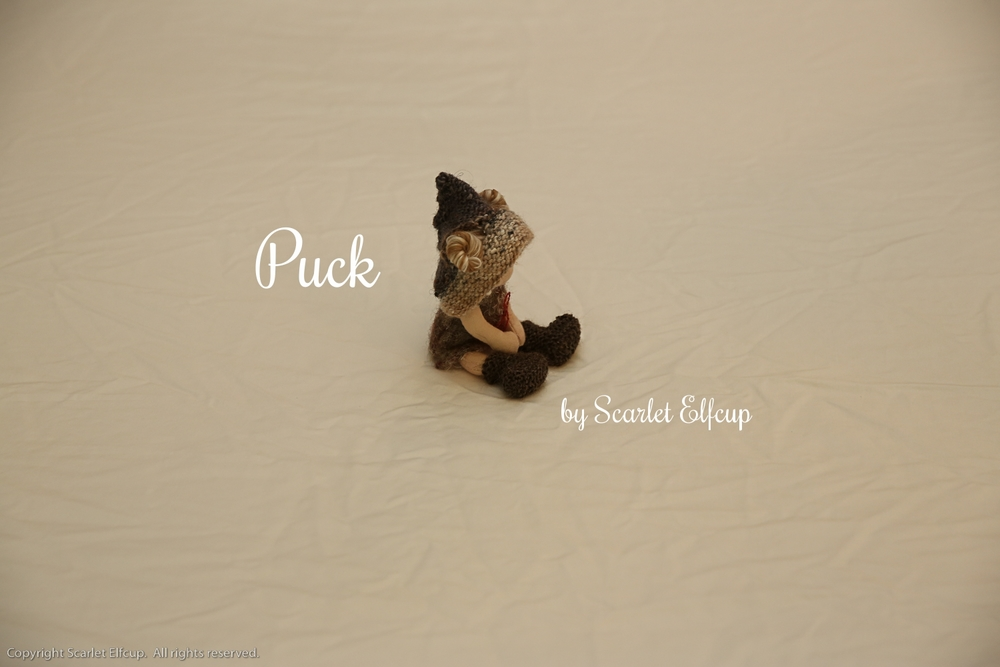 Puck-24.jpg