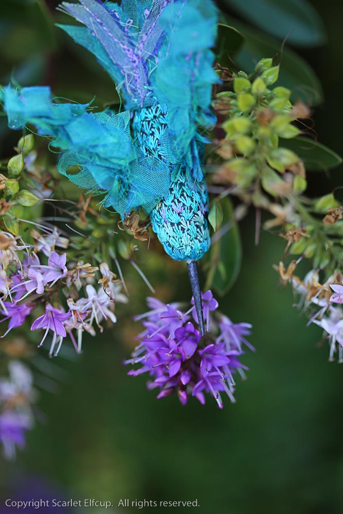 Hummingbird-73.jpg