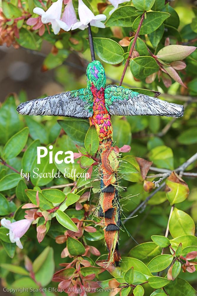 Pica-10.jpg