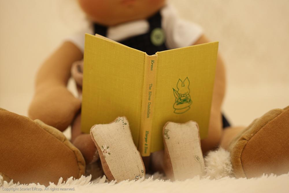 Baby Amandina-119.jpg