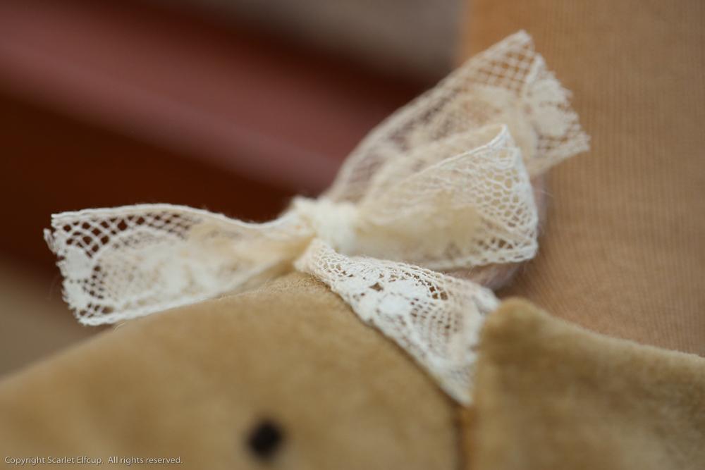Baby Amandina-38.jpg