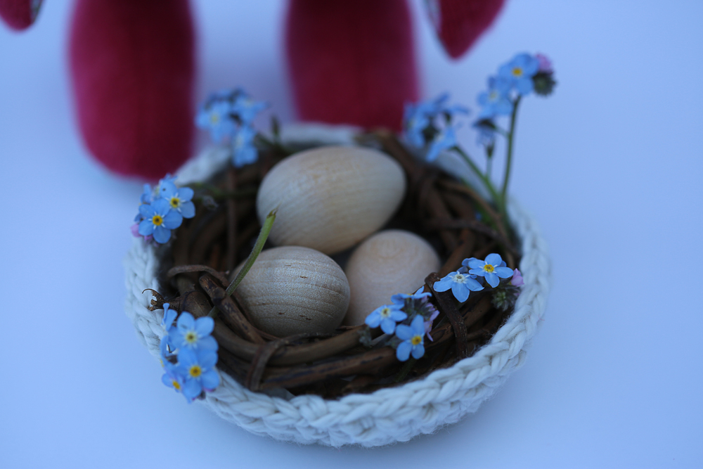 Raspberry Bunny Giveaway-4.jpg