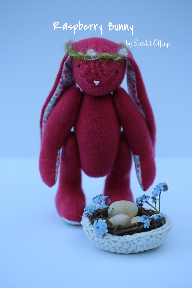 Raspberry Bunny Giveaway-1.jpg