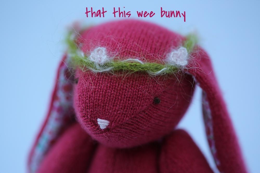 Raspberry Bunny Giveaway-3.jpg