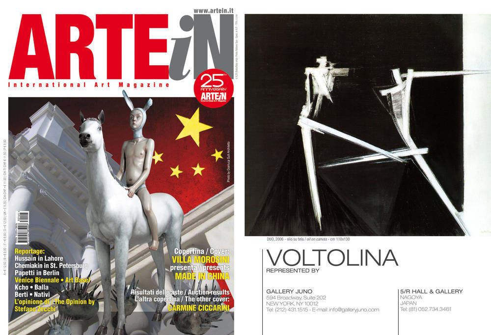 ARTEiN_VOLTOLINA1-1.jpg
