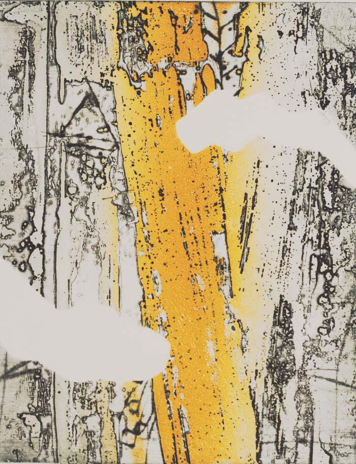 """Yuki 10""""x13"""" etching"""