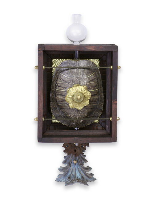 "Leonardo  7""x14""x5"" Assemblage (decorative brass, laboratory glassware, turtle shell, brass hardware)"