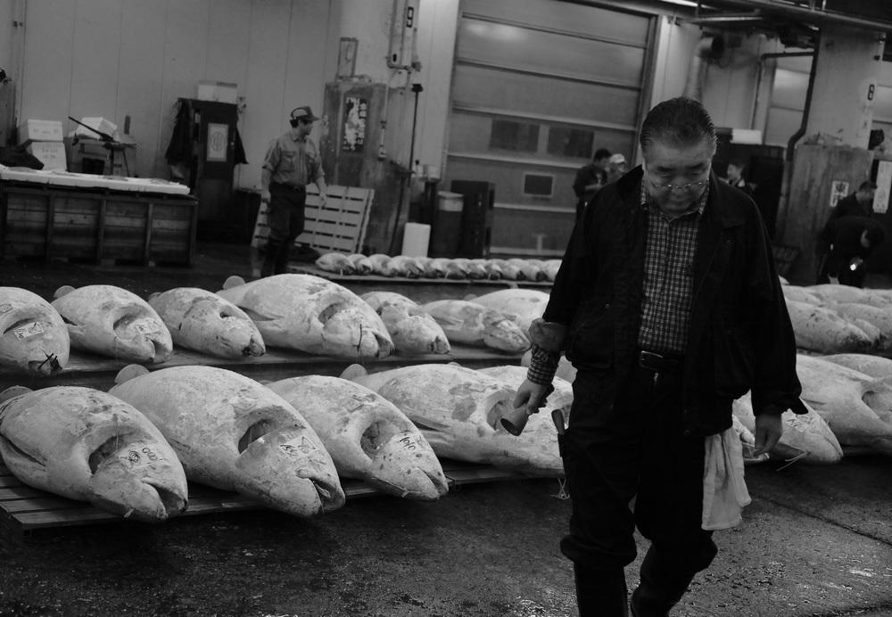 Tuna Man (Tsukiji Wholesale Market, Tokyo)