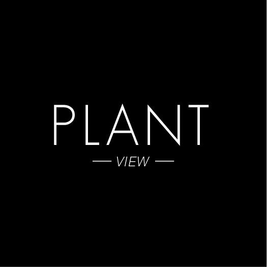 PLANT.jpeg