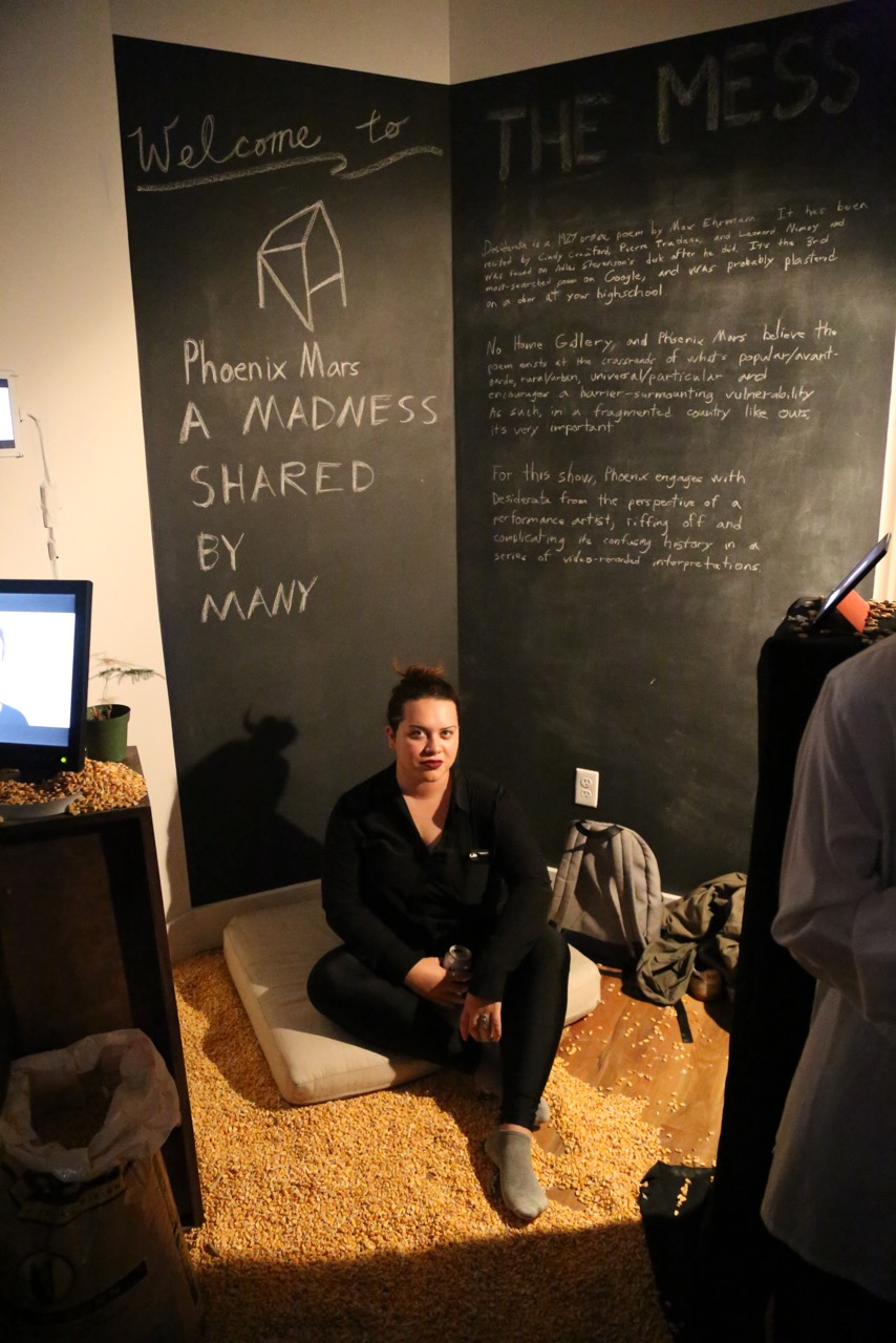 Phoenix Mars - A Madness Shared By Many, Hosted No Home Gallery & The Mess.  Photo: Warren Giddarie  Mariel Negron