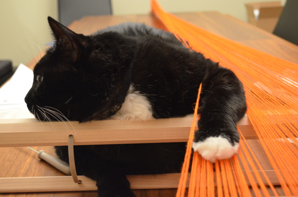 Warp or Weft : Ivan helping warp a loom