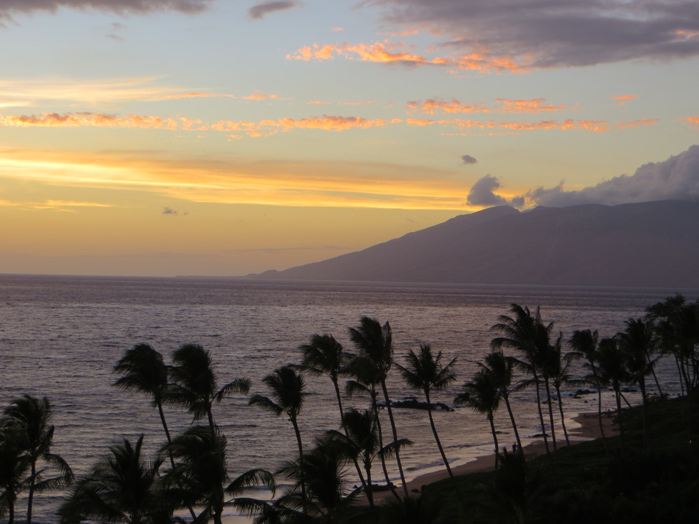 Maui vacation / warporweft.com