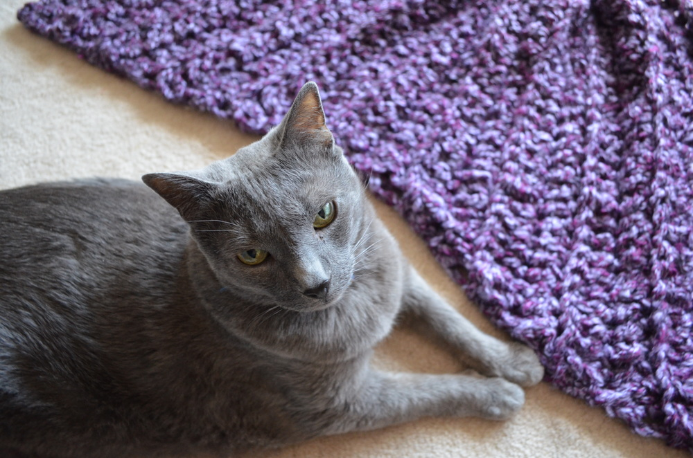 Cat crochet blanket / warporweft.com